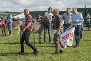 KEITH SHOW 2019 11TH -12TH AUG  IBI KEITH  -574